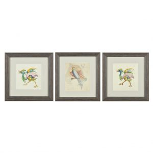Three framed designs for embroideries by The Ladies Work Society. Watercolours on paper, depicting exotic bird grotesques. From Paul Reeves London