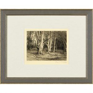A set of six framed etchings ' The New Forest ' from Paul Reeves London
